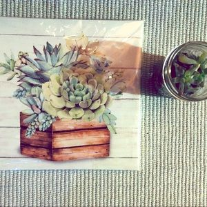 Cute Succulent Canvas